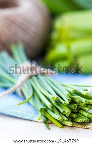 Bunch of green spring chives bow tied with ribbon, fresh vegetables - stock photo