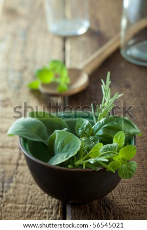 bunch of herbs in a small bowl - stock photo