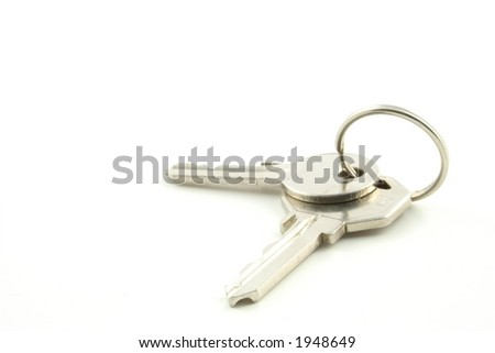 Bunch of keys on a white background - stock photo