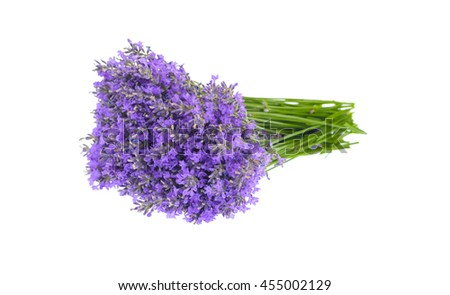 Bunch of lavender flowers isolated on white.