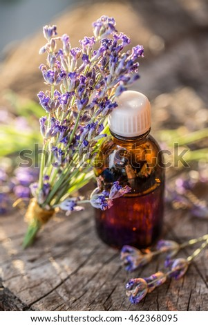 Bunch of lavendula or lavender flowers and oil bottle are on the old wooden table.