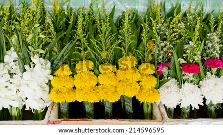 bunch of local Marigold at market in Thailand  for buddha. Handful of Marigold background texture. - stock photo