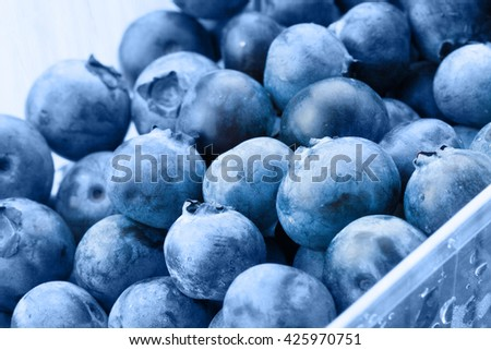 Bunch of organic blueberries in food container - close up shot - stock photo