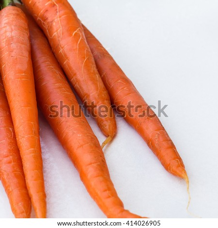 Bunch of organic fresh carrots on a white table. Summer outdoor background, selective focus - stock photo