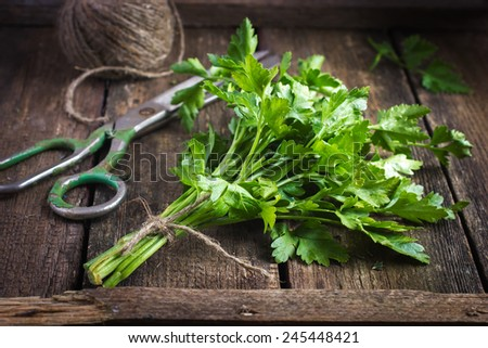 bunch of parsley on old wooden board - stock photo