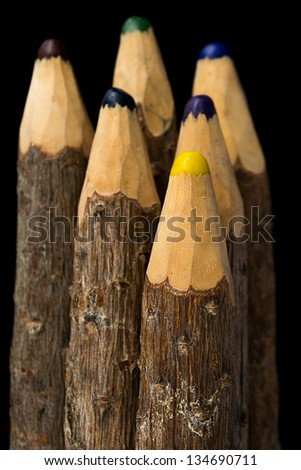 bunch of pencils stylized tree branch. isolated on the black - stock photo