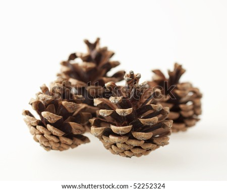 Bunch of pine cones over white background - stock photo
