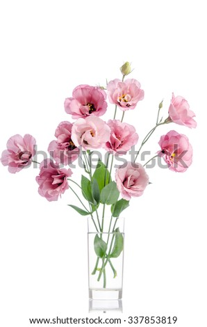 bunch of pink eustoma flowers in glass vase isolated on white - stock photo