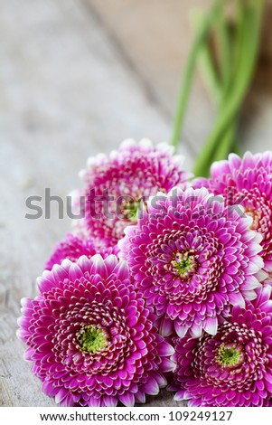 Bunch of pink gerberas on wooden background