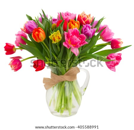 bunch of pink, purple and red  tulips in glass vase isolated on white background