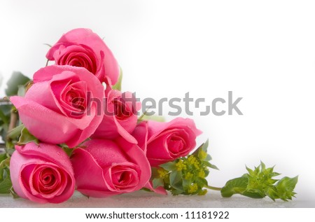 Bunch of pink roses - More flowers in my portfolio!!!! - stock photo