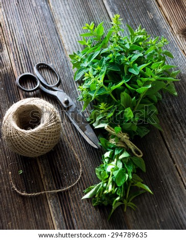 bunch of raw green herb marjoram  - stock photo