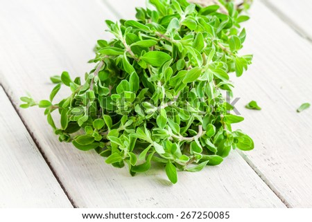 bunch of raw green herb marjoram on a white wooden rustic table - stock photo