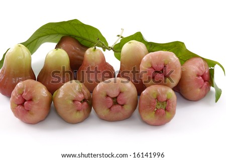 bunch of red juicy guavas on white