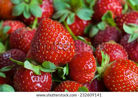 Bunch of red ripe fresh strawberries in a basket - stock photo