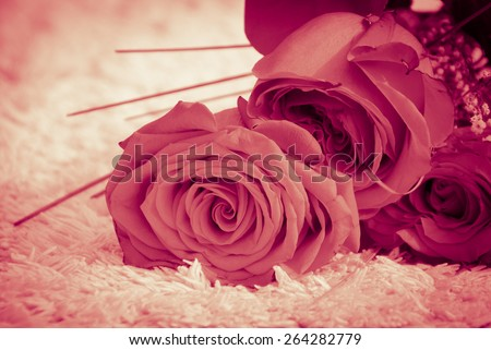 Bunch of red roses and little white flowers lying on a fluffy carpet in windy weather - vintage effect - stock photo