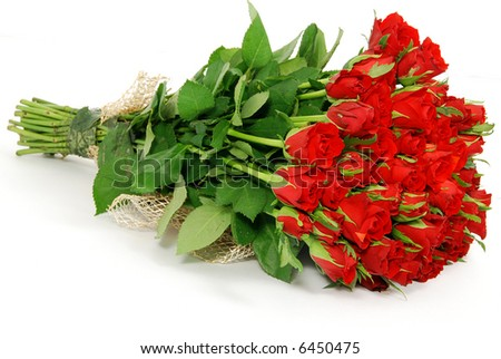 Bunch of red roses isolated on the white background - stock photo