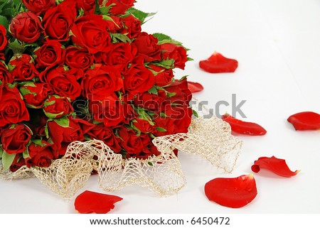 Bunch of red roses isolated on the white background with petals