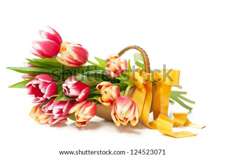 Bunch of red-yellow tulips in a basket on white background, copyspace - stock photo