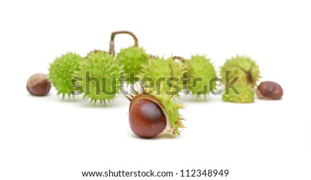 bunch of ripe chestnuts isolated on a white background - stock photo