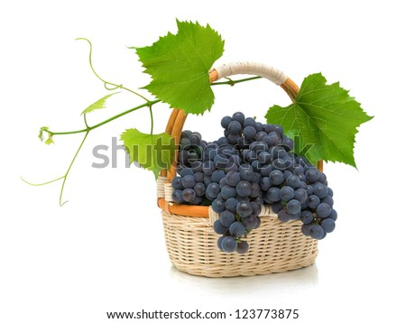 bunch of ripe grapes with leaves in a wicker basket isolated on white background - stock photo