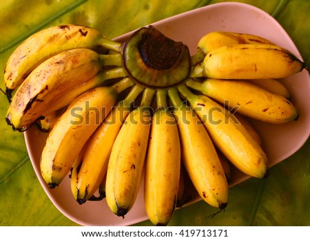 bunch of ripe mini bananas served on palm tree leaf close up photo - stock photo