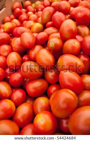 Bunch of ripe red organic tomatoes - stock photo