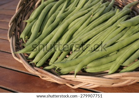 Bunch of ripe String beans - stock photo