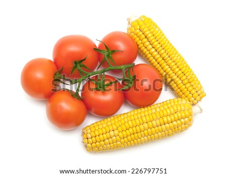 bunch of ripe tomatoes and corn on the cob isolated on white background. Horizontal photo. - stock photo