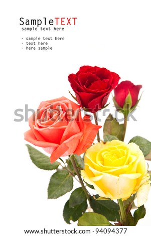Bunch of roses flower on white, valentine day concept - stock photo