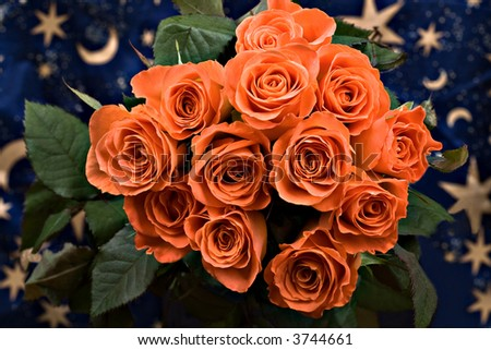 bunch of roses ,stars and moon background, nature series - stock photo
