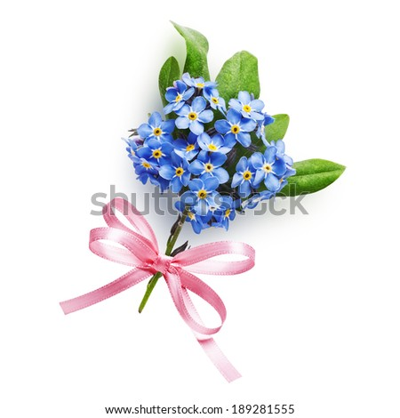 Bunch of small blue forget me not flowers with pink bow ribbon isolated on white background - stock photo