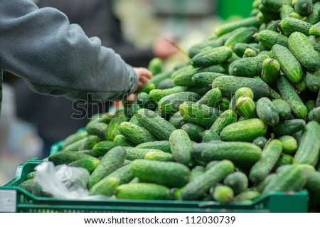 Bunch of small fresh cucumbers in supermarket. Customers select cucumbers - stock photo
