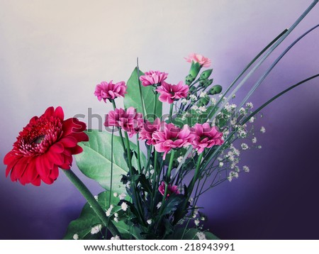 Bunch of spring flowers: red zinnia, pink daisies, carnations and tiny white buds. Instagram-like washed colors and retro effect added. - stock photo