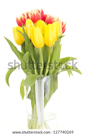 Bunch of tulips - stock photo