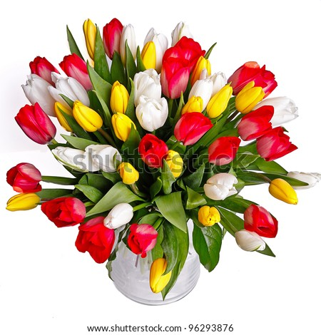 bunch of tulips in glass vase - stock photo