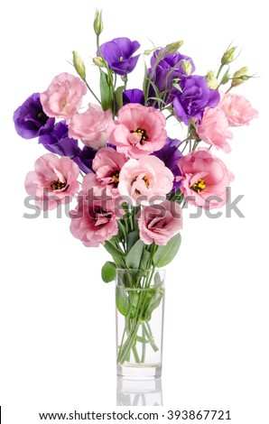 bunch of violet and pink eustoma flowers in glass vase isolated on white - stock photo