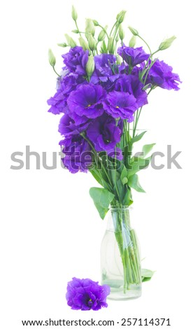 bunch of violet  eustoma flowers in glass  vase  isolated on white - stock photo