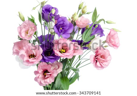 bunch of violet, white and pink eustoma flowers  isolated on white - stock photo