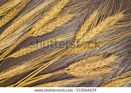 Bunch of wheat and oats on a brown background