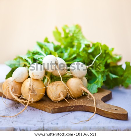 Bunch of white and yellow turnip with leaves. Also available in horizontal format.  - stock photo
