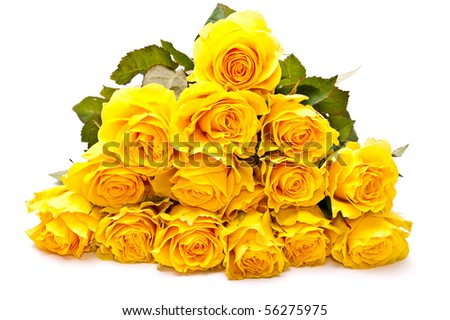 Bunch of yellow beautiful roses isolated on white background - stock photo