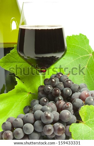 bunches of black grapes and vine leaves