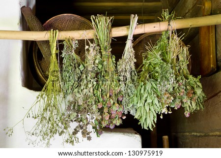 bunches of dried healing herbs