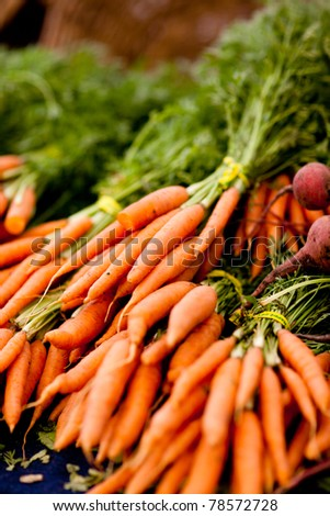 bunches of fresh carrots on a display at farmers market, shallow DOF - stock photo