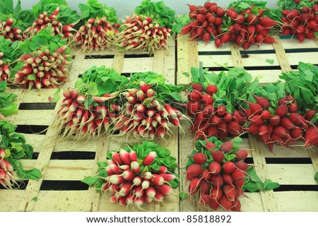 bunches of fresh radishes on a market stall - stock photo