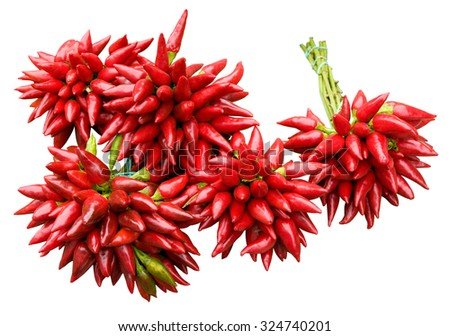 Bunches of fresh red chili peppers isolated on white background; Ingredient for typical Italian dishes - stock photo