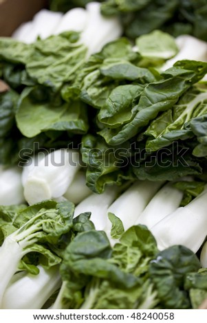 Bunches of Organic Bok Choy Piled Up At Local Farmers Market - stock photo
