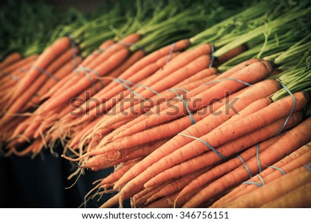 Bunches of organic carrots with green stems attached grown locally - stock photo