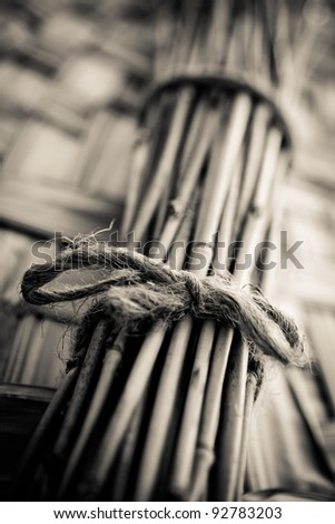bundle of bamboo stalks bind with a rope. Shallow dof. - stock photo